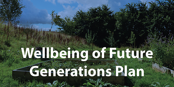 Wellbeing of Future Generations Plan